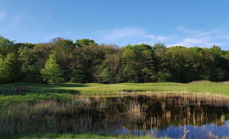 Billede fra Golfers Globe